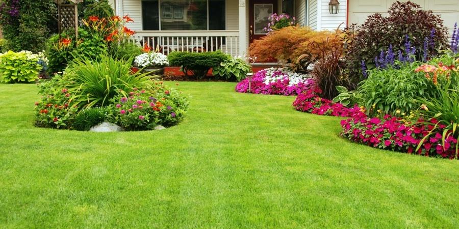 Summer Landscape Maintenance Tips